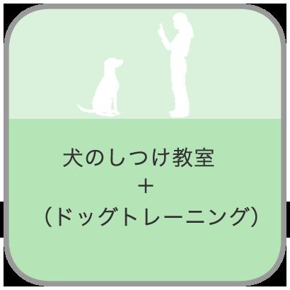 犬のしつけ教室(ドッグトレーニング)