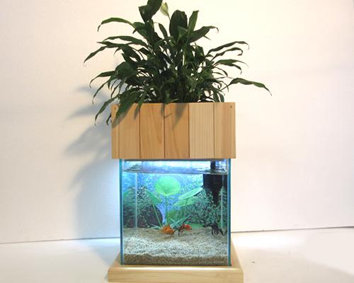 25型水槽照明木製枠台セット